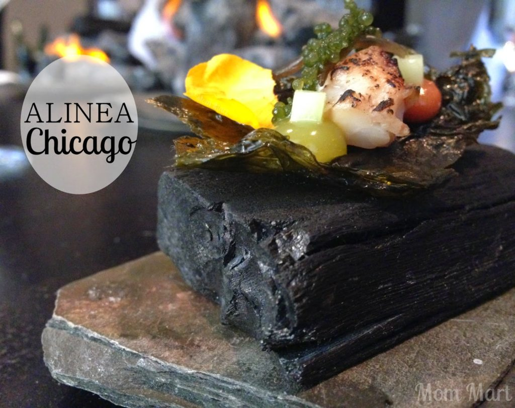 10 best restaurants on earth preview chicago chicago - Table up and down alinea ...