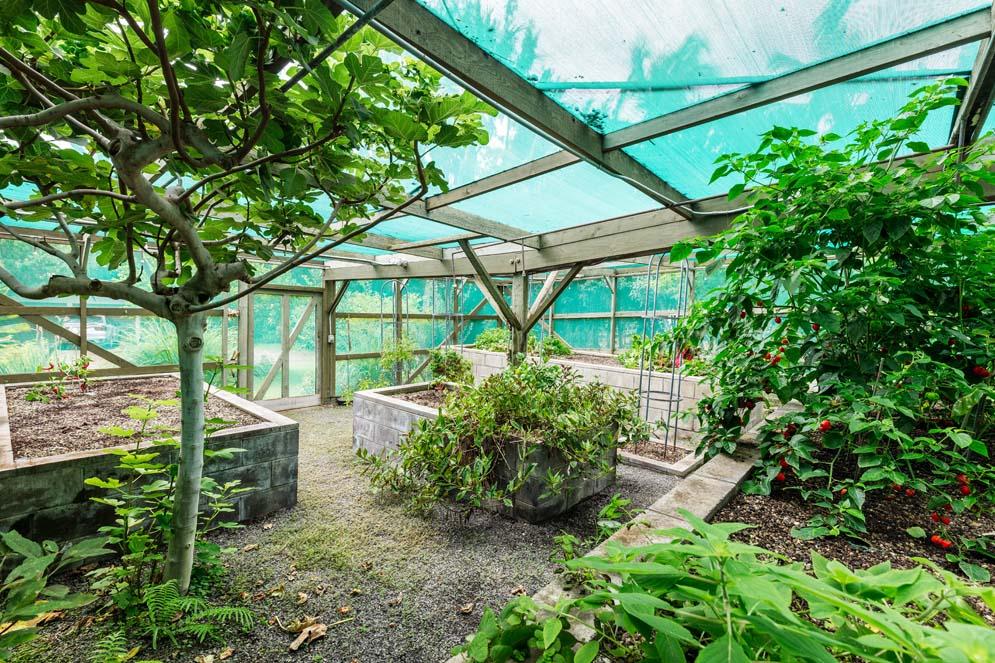 Waialea-Bay-Home-70-240f2d