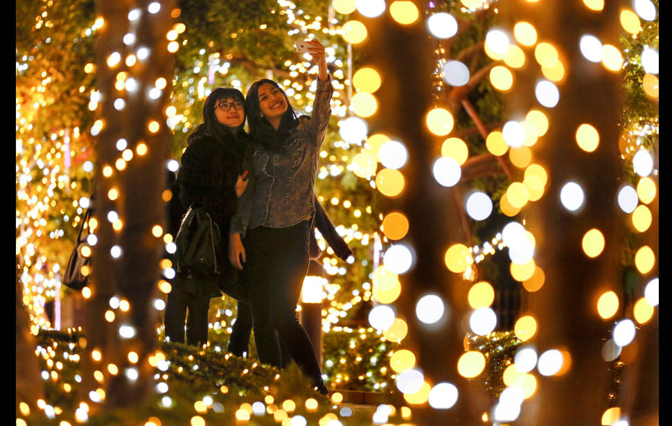 Best places to get your Christmas lights fix in Chi-Town – Preview ...